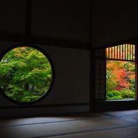 11月2回目の平日の京都 紅葉を求めて 1日目