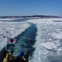 流氷を見に行ってみた。