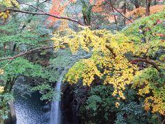 紅葉の九州縦断2泊3日の旅 その2「高千穂峡」「天岩戸神社」「阿蘓大観峰」「由布院」
