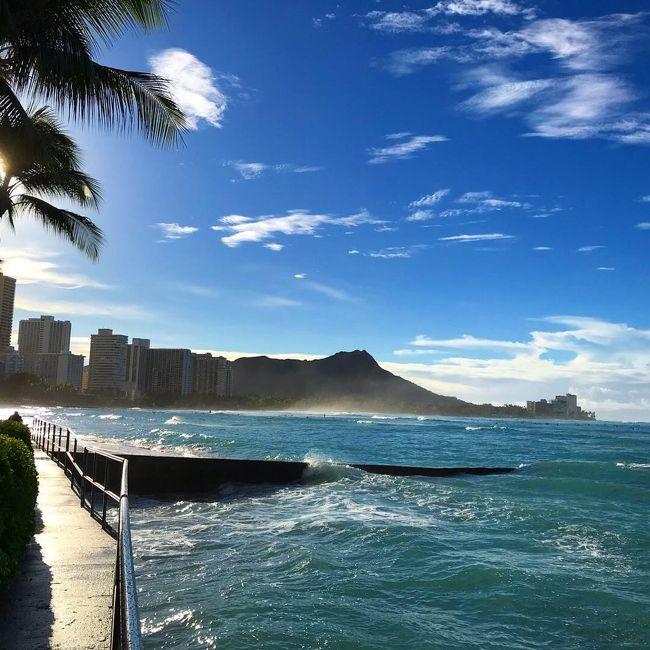 まいど、Hawaiiバカのkikiさんです~~(^^)<br /><br />⑤は、滞在6日目<br />朝イチでホールフーズにご挨拶し、その後アラモアナビーチパーク(マジックアイランド)をゆっくり散歩してブルーチャージ<br />シェラトンワイキキでオフ会<br />(総勢8名!)<br />本当に有難い事です~~感謝感謝<br />ランチは優雅にハレクラニ<br />ディナーは鉄板のルースズクリス<br /><br />沢山の方々とお逢いしたので、ゆっくり⑤ベッドで過ごす暇なし~ (笑笑)<br />以前は干物状態でプールで寝てましたが<br />最近のkikiさん 、とにかくバタバタと忙しく動いています<br />これも、4トラ効果ですね~~<br />そして、こんなに写真撮る事なんて以前では考えられませんよ<br /> (自分でもたまげる)<br /><br />今回も写真多いです <br />(ごめんなさいね~)<br />情報として、アップしているのでサラサラと見て頂けたら幸いです<br /><br />どうぞよろしくお願い致します<br /><br />kiki (^^)<br /><br /><br />