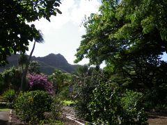 ハワイ TheBus1-DAY PASSで植物園巡りinオアフ島4~6日目(帰国)クィーンカピオラニガーデン・クリームポット・マグロブラザーズ・アラワイ運河散歩