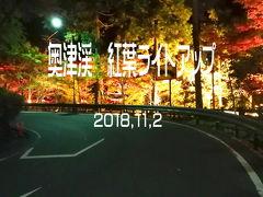 ライトアップ紅葉