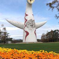 「飛行機の聖地」と「太陽の塔の中へ」〜大阪1泊2日〜