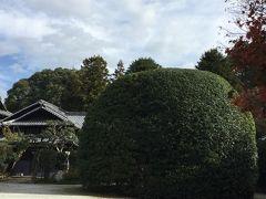 秋の麻生大浦荘