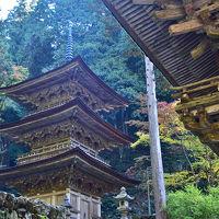 「美濃の正倉院」と言われる両界山横蔵寺の紅葉