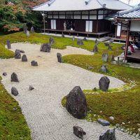 虹の苔寺と呼ばれる京都の紅葉の穴場、東福寺の境外塔頭光明院と夜の伏見稲荷