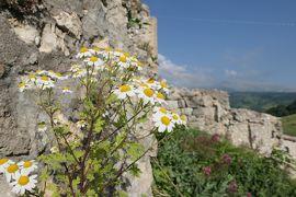 美しき南イタリア旅行♪ Vol.595(第20日)☆美しき山岳村「ロッカカラマニコ」古城跡からのパノラマ♪