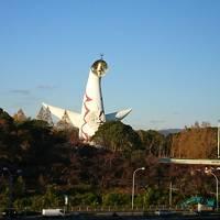 2018年 11月 秋はまたまた大阪で!ニフレル、セントレジス大阪、シェラトン大阪