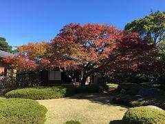 2018年 福岡市内の紅葉を見に気ままにぶらり旅