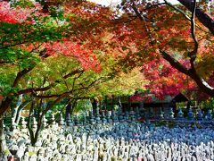 秋の京都で紅葉をめでる その4 嵯峨野めぐり