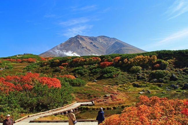 北海道在住3年半で撮りだめた、北海道の四季を紹介しながらの旅行記第4段です。<br /><br />北海道は夏も短いですが秋もまた短いです。紅葉のシーズンを秋とするならば、8月後半から始まり10月の半ばには終了してしまい、後は長い冬を待つばかりとなります。<br />しかし、そんな中でも自然は急速に色づき、四季折々の美しい顔を見せてくれます。<br />今回は主に9~10月の道東・道北を中心とした秋の風景を見に行くとしましょう。<br />