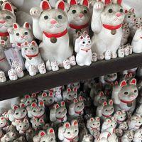今年は親子で東京観光 *(^0^)* 2日目は招き猫発祥の地と言われている世田谷の豪徳寺!!