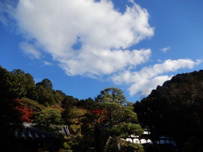 まあちゃんさん主催の台湾オフ会メンバーが京都に集結し、京料理や南禅寺等秋の京都を満喫しました。ただ、お天気もよくハイシーズンとあって、どこもかしこも大混雑でした。<br />メンバー:まあちゃんさん、しどにぃさん、タビガラスさん、まっつんさん、Middxさん、YASUさん、やるやんさん、ありんありん