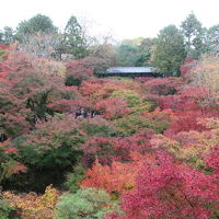 久しぶりの奈良・京都 � 〜京都・東福寺と東山の紅葉