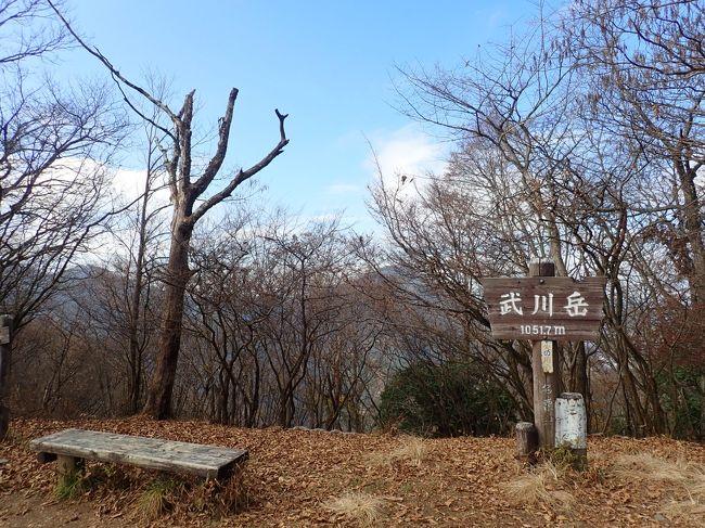 久しぶりに奥武蔵の山に行きました。<br />トレーニングのつもりでしたが途中足をつりまくり帰れないかと不安になってしまいました。