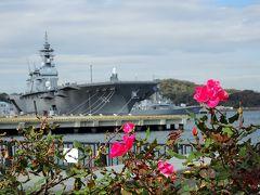 横須賀港周辺から観音崎の海辺まで