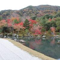 久しぶりの奈良・京都 � 〜京都・嵐山と東寺