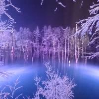 雪降るなかのライトアップによる青い池の七変化