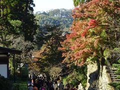 北鎌倉~鎌倉 散歩