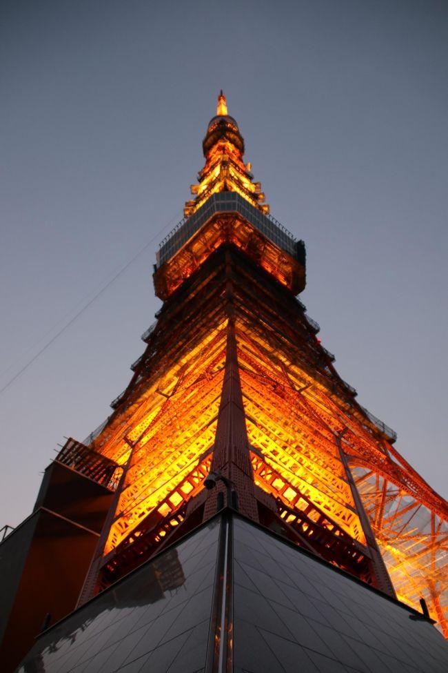 久しぶりに都心を散歩することにした。<br />まずは東京タワー。<br />何十年ぶりだろう。近くでこんなにまじまじ見たのは。<br />神谷町で降りて増上寺までてくてく。