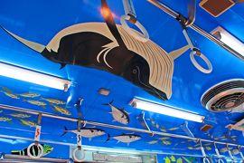 謎の生き物コノドント…その不思議な響きに惹かれて☆おさかな電車に揺られて 関東の耶馬溪;秋色の高津戸峡へ