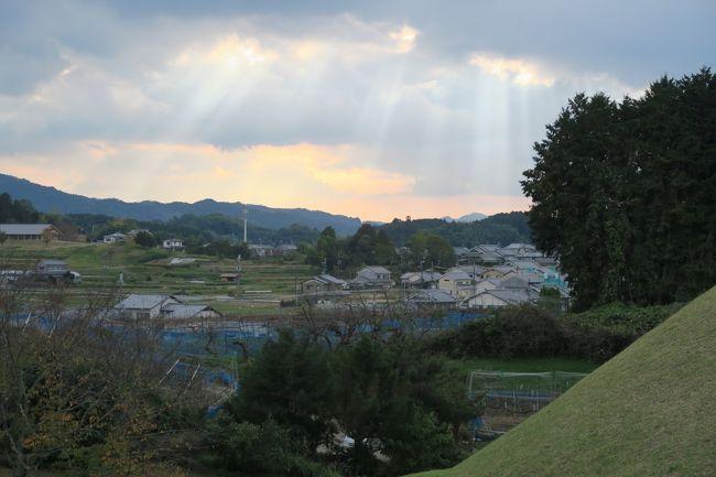 20世紀以来の奈良。初めて車で明日香村を回ってみる。村民各位の多大な努力で田舎の風景は保たれているが、国営公園がりっぱに整備され、道もそこそこ改良されてやはり時代の流れは感じる。石舞台を訪れた後観光案内の地図で高取城を見つけてしまい、意外と近いから行ってみるかと思い付いた。車なら11㎞、20分ほどとある。日本最強の山城ともいわれる高取城。その名に恥じない大規模かつ不便極まりない山城でした。城下町から比高390mという高さに築かれた本丸からは奈良盆地、南の吉野、さらには大阪市外から六甲、比叡山まで一望の眺望。これほど高い山に巨大な石垣で築かれた城。<br />登ってみて思うことは実際の防御の厚さ以上にこの城は敵方にとっては、遠く、高すぎ、まともに攻める気にすらならないだろうということ。これは小田原攻めの一夜城と同様に敵の戦意をくじくための見せる城だったのではないかということ。そのための白く目立ち多数の櫓と天守閣を見通しのよい山上に築いたのではないかと。天下人秀吉の信頼あつい弟、大納言秀長の巨大な権威の象徴だったのでしょう。<br />高取城のあとは壺阪寺を参拝し、明日香村のキトラ古墳、高松塚、亀石、酒船石を駆け足で巡りました。行きたいところはほぼ行けて、さすがに車の機動力は抜群でしたが、奈良までは渋滞しやすい道で、少々タイムオーバーしてしまいました。