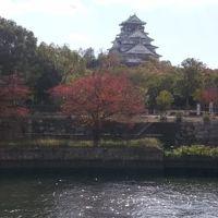 大阪名古屋そして佐久島でアートな島を満喫するのだ(大阪編)