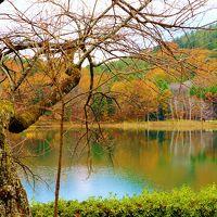 山海の珍味と温泉を巡る旅三日目七不思議の湯 白根館、四尾連湖とみたまの湯