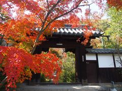 激混み京都の紅葉名所が嫌なら八幡に限る!そのあと星のブランコにチャレンジ(^O^)/