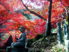 真っ赤に染まる大山寺 朱色に染まる阿夫利神社 そして修行のために大山登山