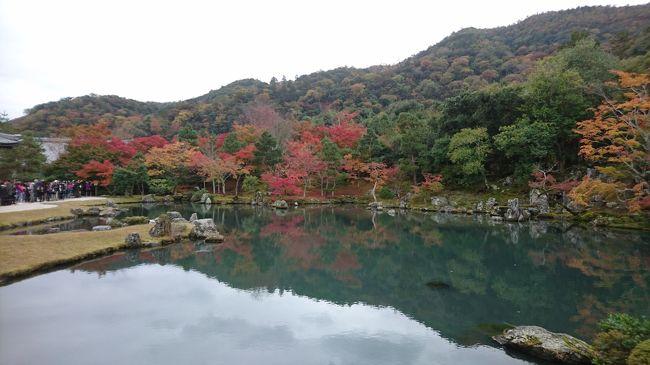 2018年秋も日帰りで京都の紅葉狩りをしに行きました。<br />今回は嵐山・洛西編と洛北・洛東編の2つに分けて紹介していきます。<br /><br />まず、嵐山・洛西編は、嵐山・洛西エリアを紹介するだけでなく、京都タワーも紹介していきます。<br /><br />ちなみに、洛北・洛東編はこちら↓<br />https://4travel.jp/travelogue/11426971