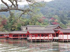 激安ツアーで錦帯橋、宮島へ