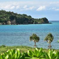 ノープランで出発・沖縄本島北部の自然満喫旅 �