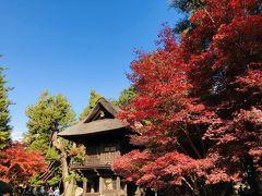 平成最後の紅葉を満喫する旅 Part2