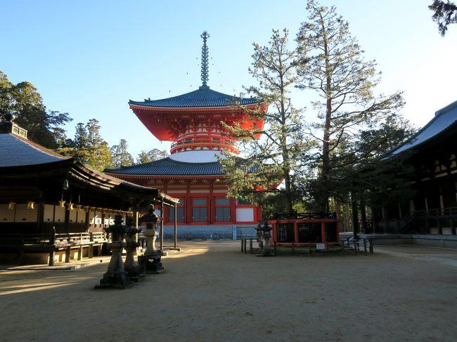 今回の旅行で特に楽しみにしていたのは、高野山でお寺が運営する宿坊に泊まることでした。<br /><br />高野山では現在52の塔頭寺院が宿坊として訪問者に宿を提供しています。由緒あるお寺に泊まるという経験は特別です。朝のおつとめに参加させてもらえたり、朝夕に提供される精進料理も魅力です。<br /><br />私たちが泊まったのは宝城院という870年の歴史を持つお寺です。トイレ・洗面所が共同であるなど多少不便な点はありましたが、お風呂は気持ちよく精進料理は美味しい。何よりお坊さん方の温かいおもてなしの心が伝わって来て、とても良い体験ができました。<br /><br />宝城院は壇上伽藍のすぐ近くに位置するため、夕食後ライトアップされた壇上伽藍を見に行きました。後で聞くと、この夜は氷点下まで気温が下がったとか。キーンとした寒さの中、ひと気の無い境内を歩き、ライトに浮かび上がった建物を見て回ったことは高野山での忘れられない思い出です。<br /><br />前日、渋滞により到着が遅れて壇上伽藍の日中の見学ができなかったので、翌日の朝、出発を30分遅らせて見学時間を取ってもらえることになりました。ここでもまたひと気のない壇上伽藍を満喫。朝一番で根本大塔と金堂の内拝もでき、満足度の高い高野山滞在になりました。<br /><br />~*~*~*~*~*~*~*~*~*~*~*~*~*~<br /><br /><旅行スケジュール><br />★印が本旅行記で取り上げた場所<br /><br />11月23日(祝)  東京発(06:56)こだま633号で三河安城へ<br />             ツアーバスに乗り換え、高野山へ<br />           高野山 奥の院<br />         ★ 夜の壇上伽藍<br />                  ★<高野山宿泊>宿坊「宝城院」<br /><br />11月24日(土)   ★朝の壇上伽藍<br />           談山神社<br />           長谷寺<br />           室生寺<br />           バスで三河安城へ<br />           三河安城発(20:16)こだま682号で東京へ