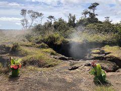 ハワイ島1周レンタカーで7泊8日気まま旅 �
