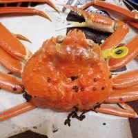 北陸ドライブ 4・5日目 蟹♪三昧の2日間 越前蟹♪は別格!