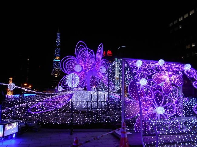 Sapporo in. Christmas Lights <br />札幌初日は大通り周辺から薄野