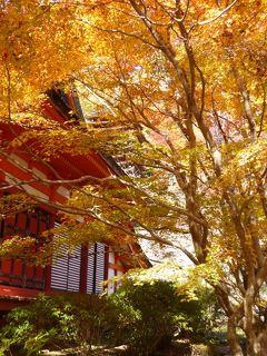 高野山と奈良3社寺の紅葉を見に<3> これまで知らなかった談山神社 はてさて紅葉は?