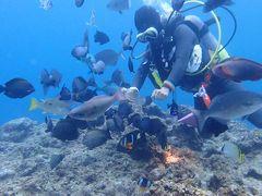 冬でも暖かい沖縄へ(7)真栄田岬ダイビング、ランチは花織そば、ディナーはルームサービス生姜焼き定食
