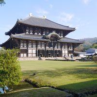 2018年 正倉院展を見に奈良へ 久々の母娘旅 2日目 東大寺・興福寺