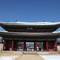 初夏の韓国へ