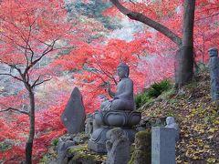 紅葉と雨降山大山寺