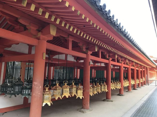 秋の奈良公園、春日大社、東大寺へ行きました。
