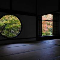 京都紅葉巡り2018 2日目