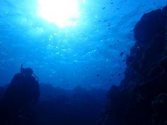 冬でも暖かい沖縄へ(8)慶良間諸島チービシ神山島ダイビングはラビリンス(迷宮)