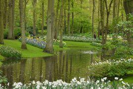 春爛漫のオランダ&ベルギー【2】キューケンホフ公園→アムステルダム街歩き