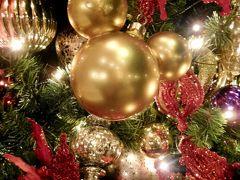 2018【年パス日記】その32 ディズニークリスマス満喫大作戦☆ ダイナミックパッケージのオプションも駆使します!