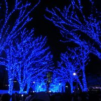都内イルミネーション巡り!キラキラ☆ナイトランで東京観光!