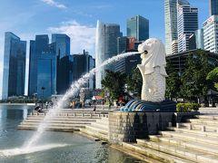 ANAビジネスクラスでシンガポールへ